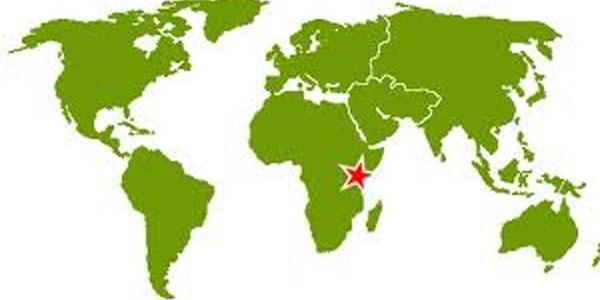 Dermatology in Kenya: The Advances of Medical Tourism